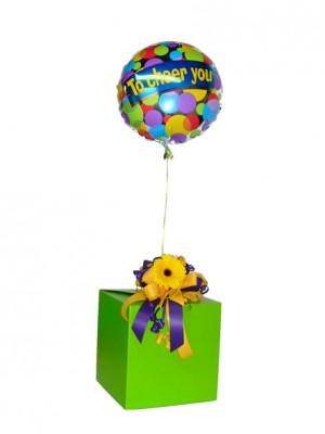 box-ballons