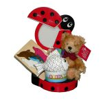 lady-bug-activity-tin