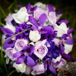 mixed-purple-orchids
