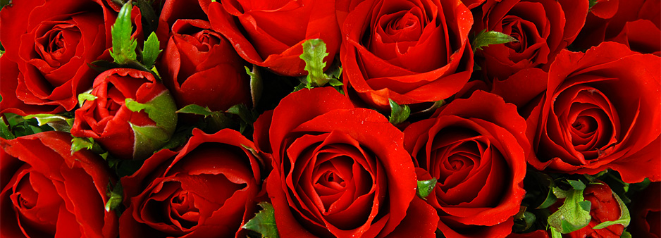 Valentines Day: Tuesday 14th February