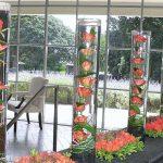 rose-cylinder-vases