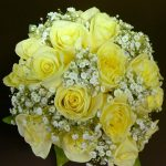 roses-and-gypsophlia